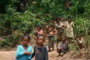 Peru Jungle006