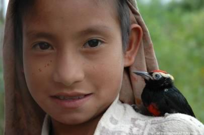 Peru Jungle008
