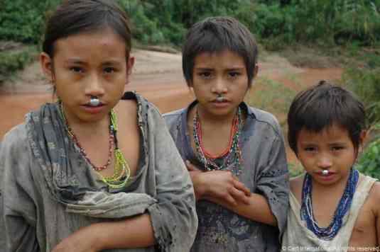 Peru Jungle016