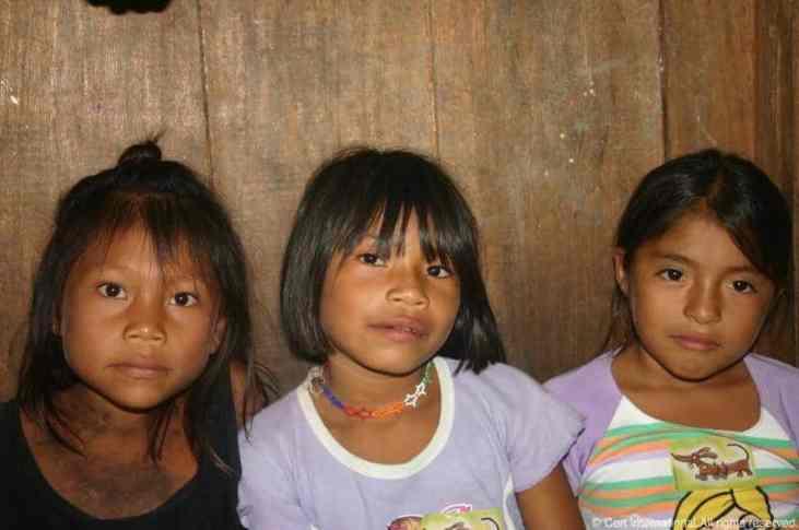 Peru Jungle024