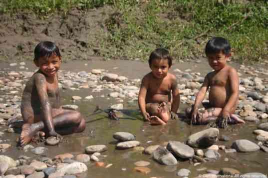 Peru Jungle025