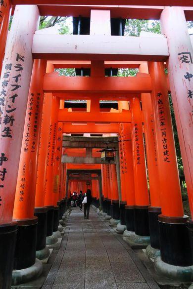 Pasillos de toris en Fushimi Inari en Kioto, Japón