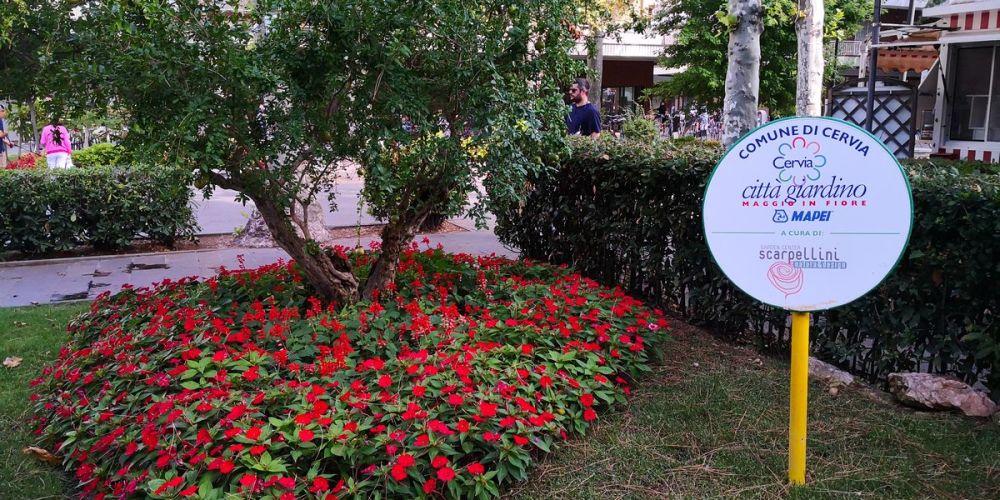 scarpellini cervia città giardino