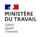 logo_FSE_ministere-du-travail