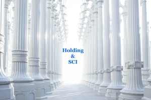 Holding + SCI: Créer et augmenter votre patrimoine