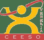 Logo-CEESO-IT