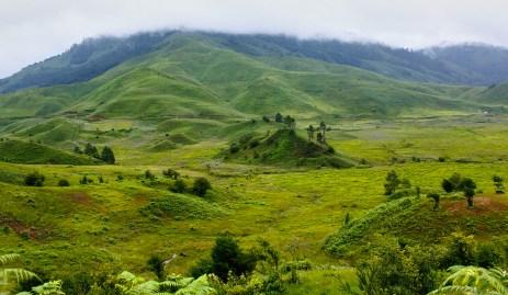 Ashok Kumar Mallik. 2011. Mechuka Valley, Aruanachal Pradesh.