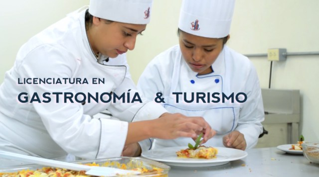 Licenciatura en Gastronomía y Turismo en Pachuca