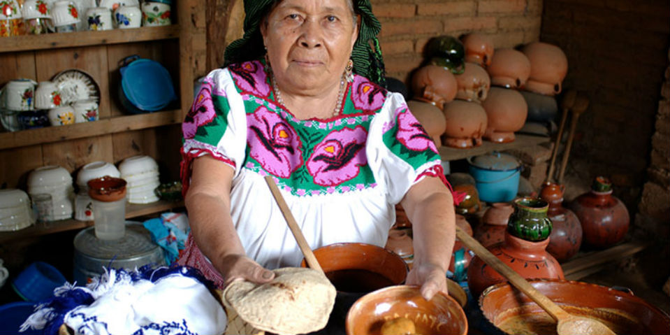cocinera tradicional animal gourmet