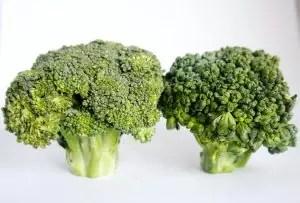 potravin
