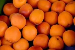 apricots-1509634_960_720