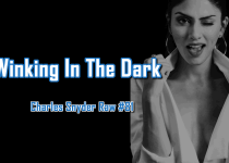 Winking In The Dark - Charles Snyder Raw #81: It's unscripted, unplanned and uncooked!