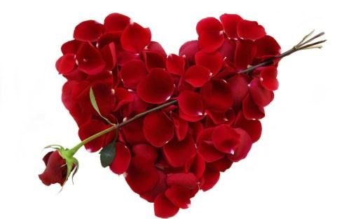 poruke-za-valentinovo-1-ruža