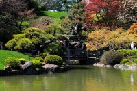 Japanese Hill-and-Pond Garden  C'est la Vie, Annie