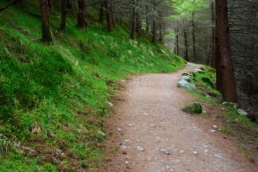 Cestou k Ben Nevisu