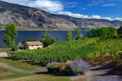 La Stella Winery