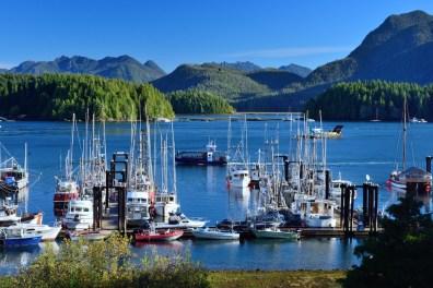 Vancouver Island | Tacofino