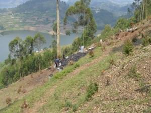 Místní výrobna dřevěného uhlí zrychle rostoucích eukalyptů