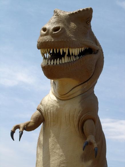 Copy of Dinosaur Valley, avril 2006 (5)