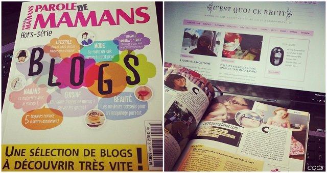 blogs-pdm