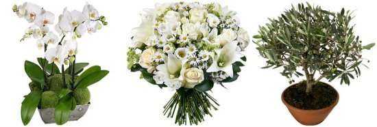 fleurs-aquarelle-1