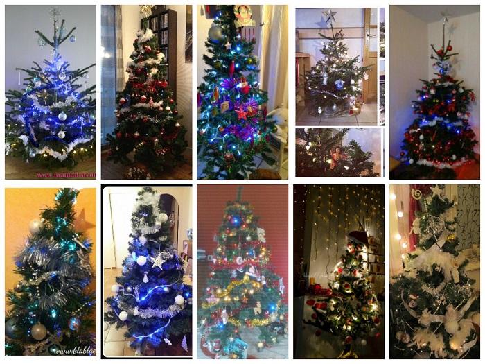 sapins-de-Noël-blogs