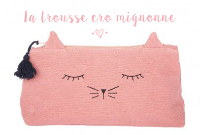 La trousse chat