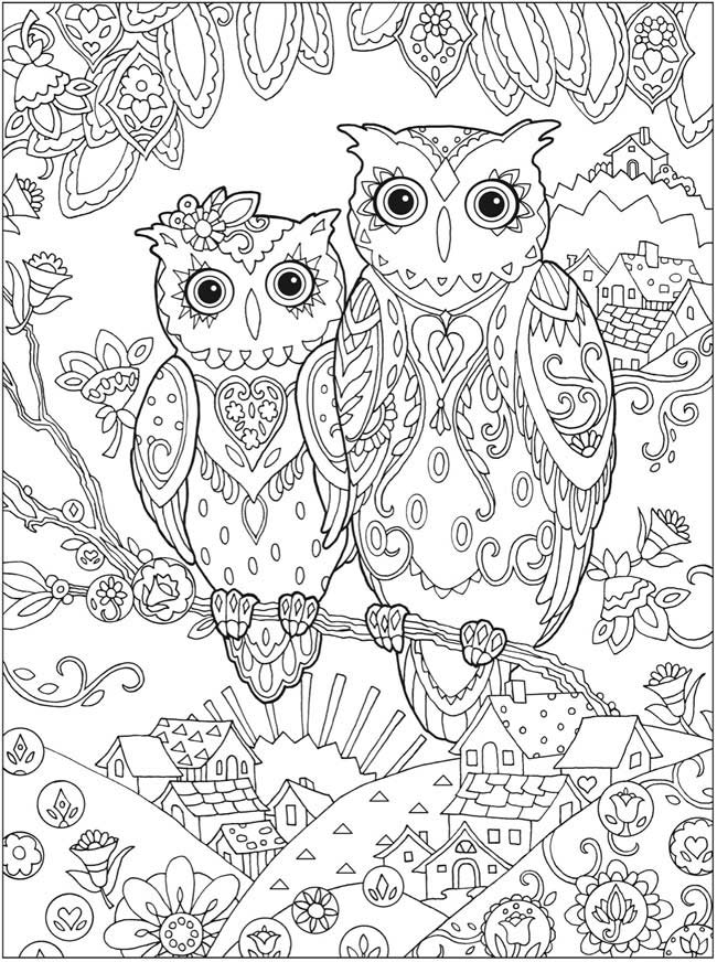 Coloriage anti-stress pour adulte hiboux : zentangle