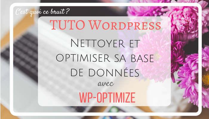 Optimiser sa base de données Wordpress avec WP-Optimize