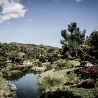 Du côté d'Anduze, au pied des Cévennes