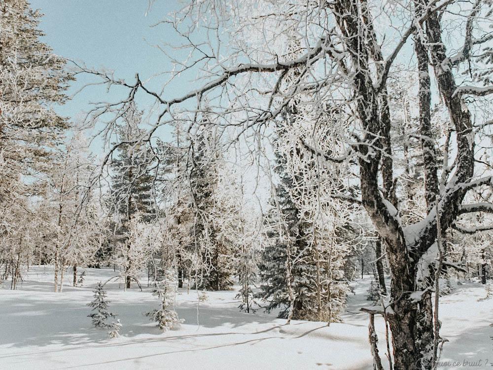Voyage en Laponie Finlandaise à Yllas avec Jet Tours et balade en raquettes dans la neige
