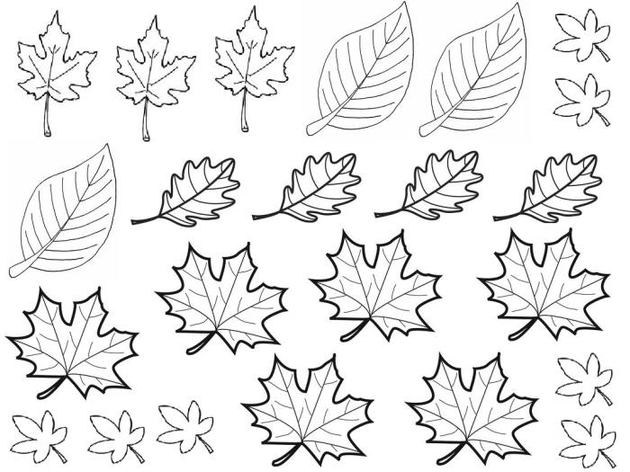 Coloriage de feuilles d'automne à imprimer gratuitement #coloriage