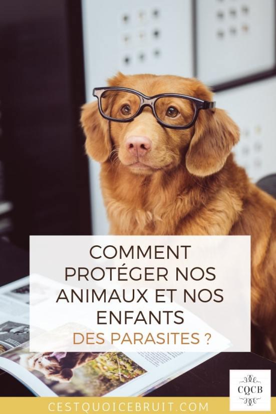 Comment protéger nos animaux et nos enfants des parasites ? Vers, tiques, puces. #animaux #famille #chien #chat