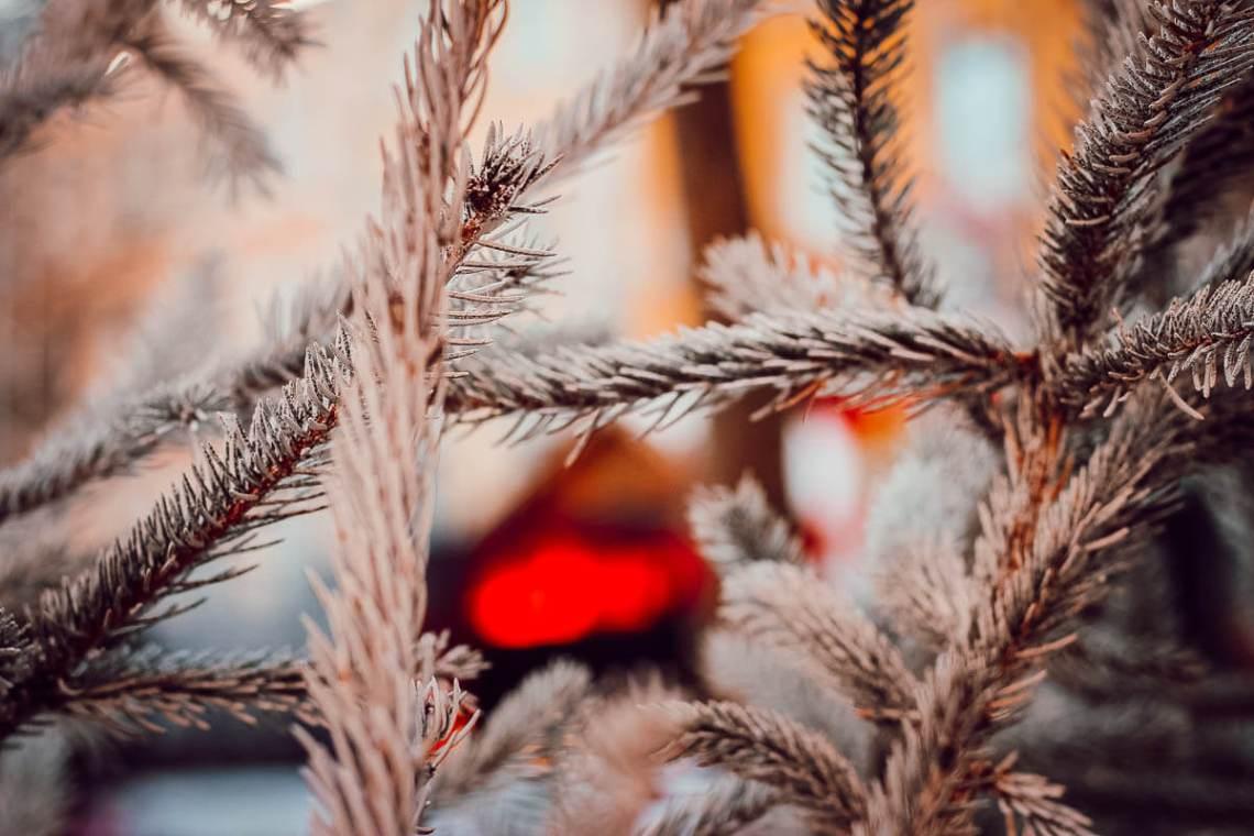 Magie de Noël à Carcassonne pendant les fêtes
