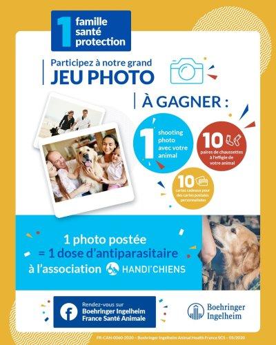 Concours : gagnez un shooting photo animalier à domicile avec un photographe professionnel