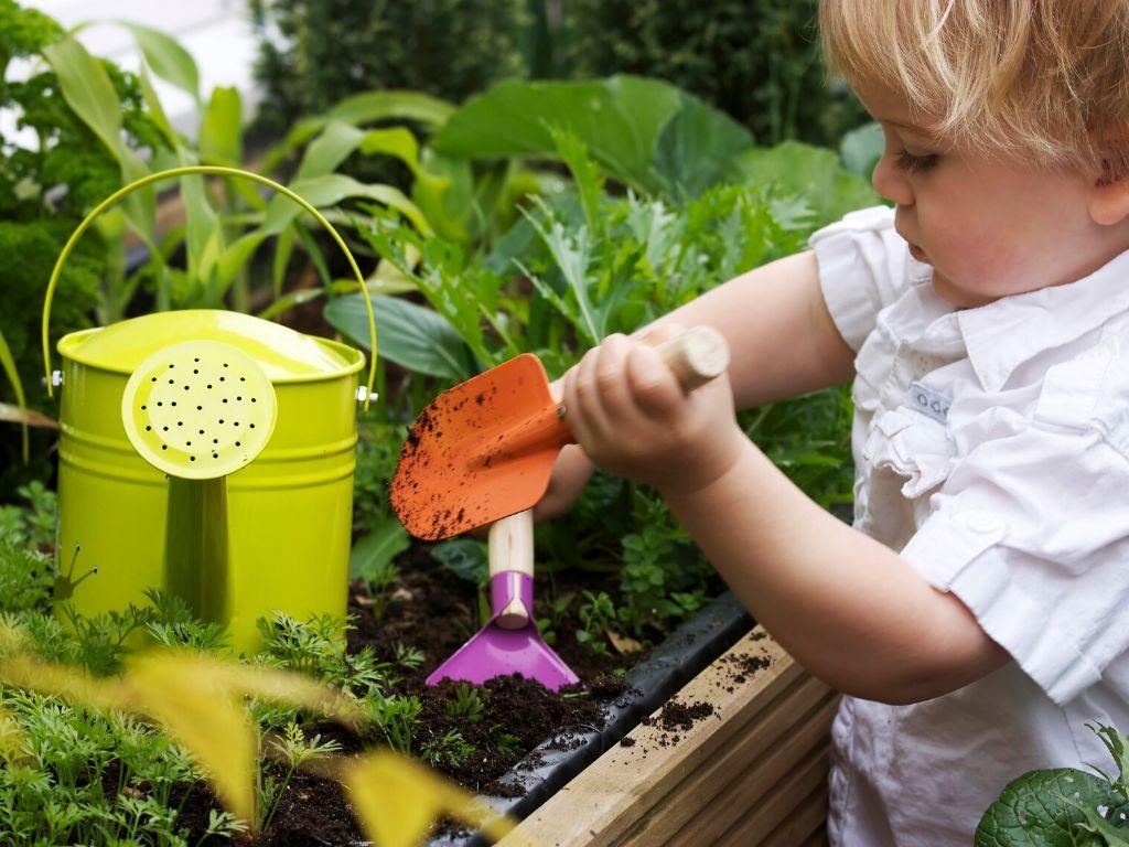 Jardiner avec les enfants en installant un potager dans le jardin
