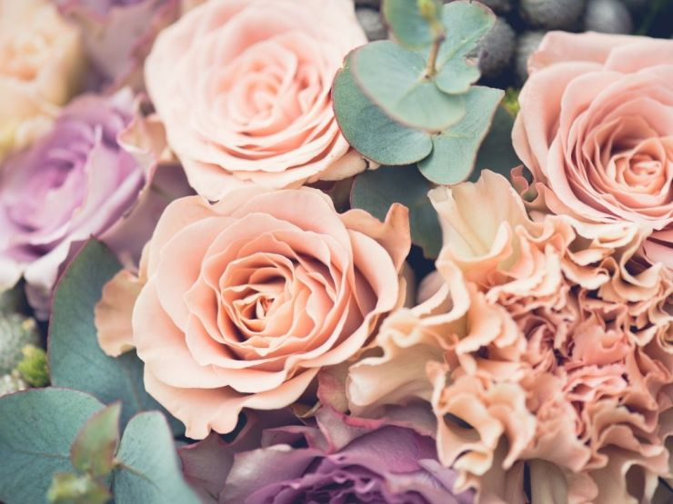 Quelles fleurs envoyer pour un anniversaire ?