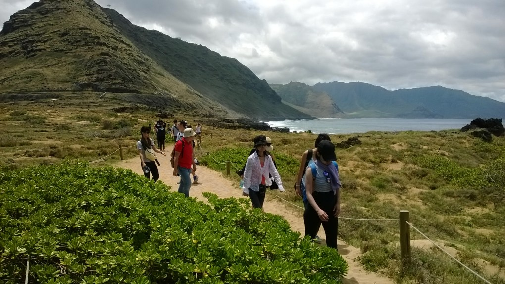 Participants along their hike.