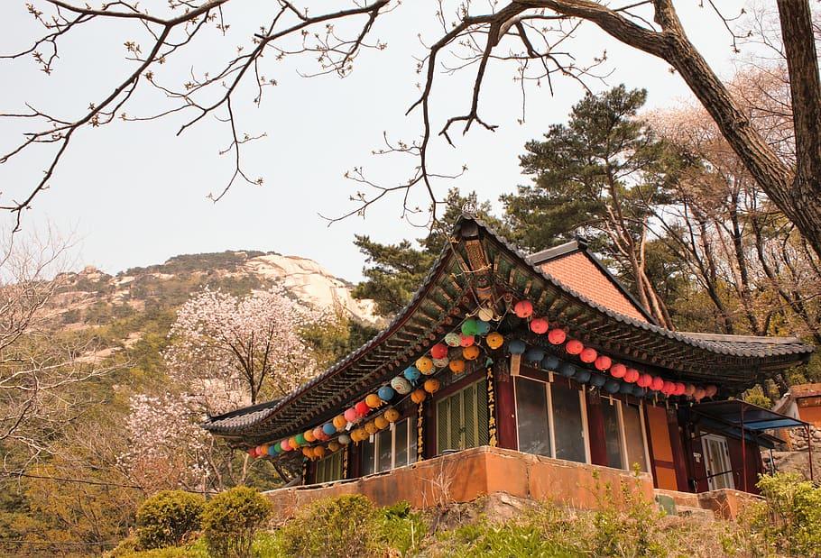 traditional-temple-bukhansan-south-korea-korea
