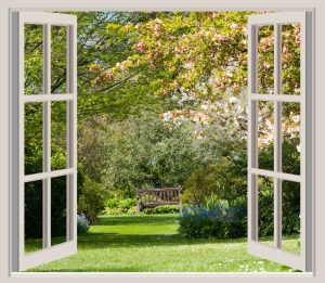 spring-garden-window-frame-view