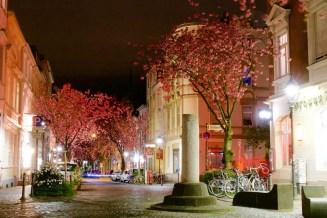Kirschblüten vorm Bierhaus