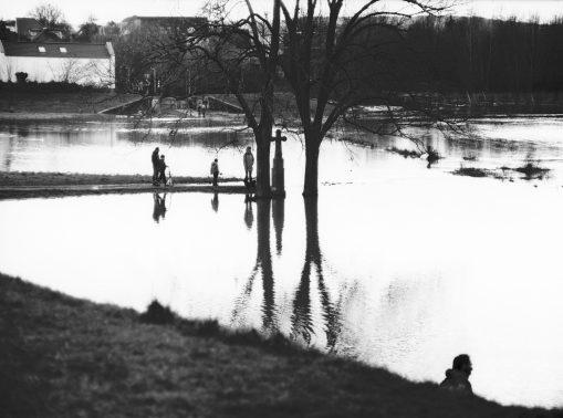 Spaziergänger in den Wiesen am Rheinufer bei Hochwasser
