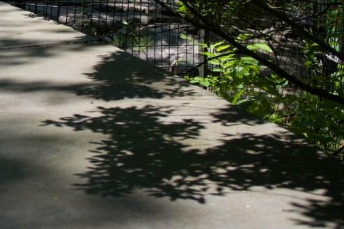 Schatten auf einer Sitzmauer im Park