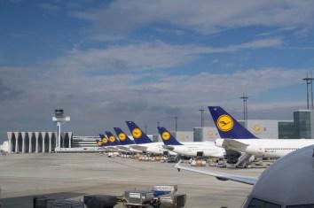 FRA - Lufthansa Flugzeuge am Flughafen Frankfurt