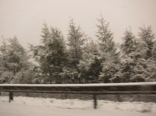 Auf dem Brennerpass