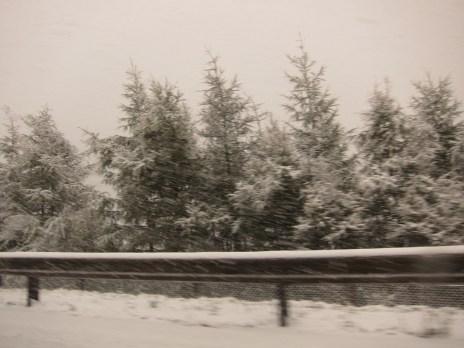 Brennerpass - Seitenstreifen im Schnee