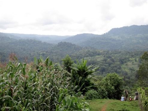 Unterwegs beim Mankira Forest in Kaffa, Äthiopien