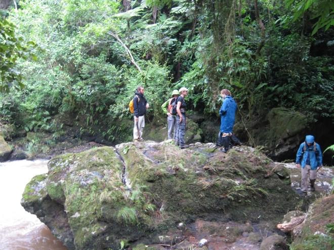 Am Fluss im Wald in Kaffa, Äthiopien