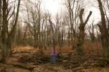 An der Waldau, im März