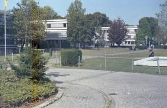 Auf dem ehemaligen Tulpenfeld